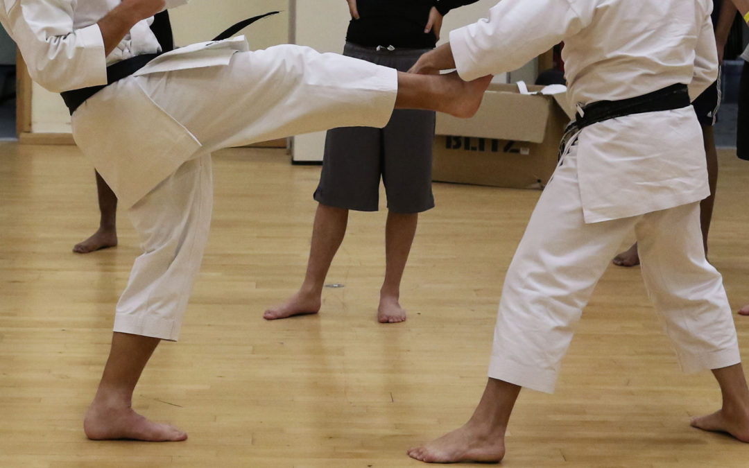 Karate Scholar Sets Sights on European Games Medal